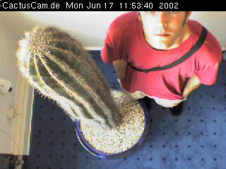 bochum-kaktus.jpg