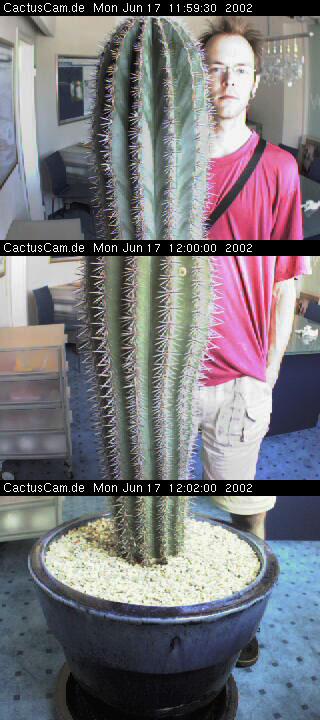 bochum-kaktus2.jpg